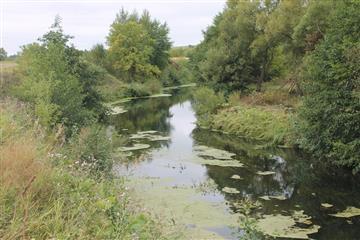 """В рамках федерального проекта """"Сохранение уникальных водных объектов"""" работы выполнены в полном объеме"""