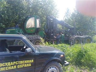 В Башкортостане в ходе оперативно-профилактических мероприятий «Лес» выявлено 239 нарушений лесного законодательства