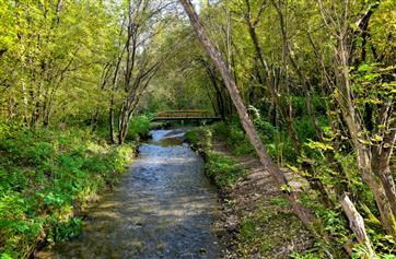 """В рамках нацпроекта """"Экология"""" в парке """"Балатово"""" появится визит-центр особо охраняемых территории Прикамья"""