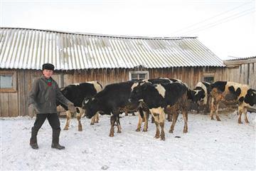 В Марий Эл фермеры получат поддержку