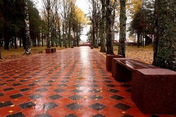 В Лузе по нацроекту благоустроят парк культуры и отдыха