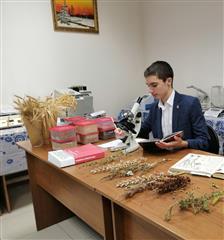 Молодое поколение Самарской области решает задачи сохранения лесов