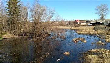 """В Прикамье определят подрядчика по расчистке реки в рамках нацпроекта """"Экология"""""""