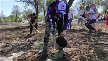 """В рамках акции """"Сад памяти"""" высажено 40 деревьев в парке имени Ленина в Оренбурге"""
