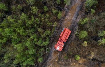 Нижегородские лесничества получат 100 единиц оборудования до конца года