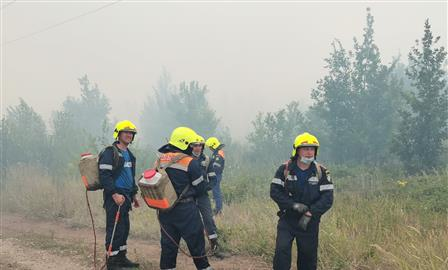 Пожар в Тольятти связывают с поджогом