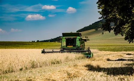 Аграрии Поволжья прогнозируют потери от засухи