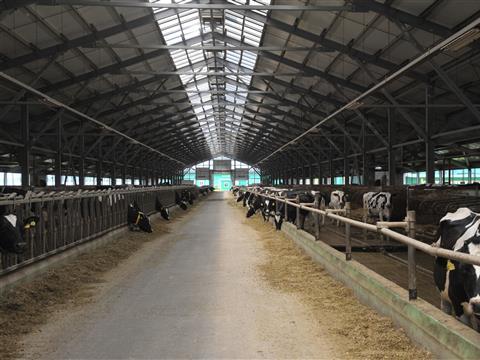 Передовое сельхозпредприятие региона запускает собственную котельную