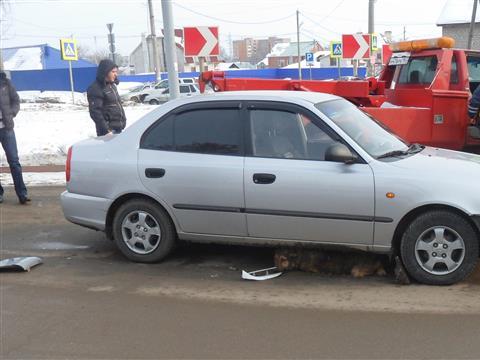 Водитель иномарки почти час не позволял спасателям помочь попавшей под колеса собаке