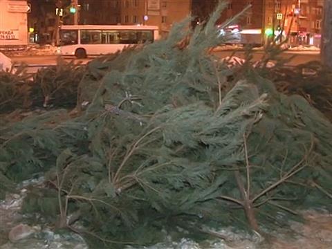 В Самаре не распродали тысячи елок