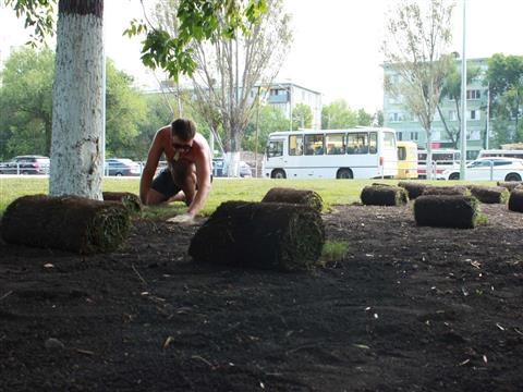 В сквере на Ново-Садовой начали укладку газона