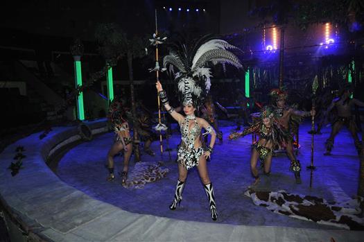 В Самарский цирк привезли новое шоу Гии Эрадзе с белыми тиграми, кенгуру и гиббонами