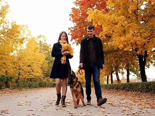 В Тольятти снимают фильм о собаке, ставшей легендой города