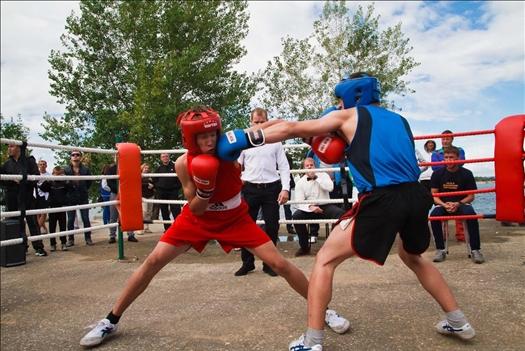 ФБР исключила из своих рядов федерацию бокса Самарской области