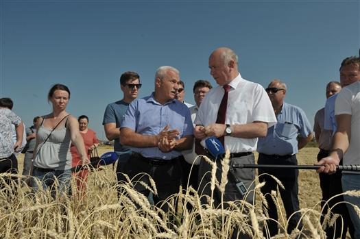 """Николай Меркушкин: """"В этом году Самарская область может поставить абсолютный рекорд по сбору урожая"""""""