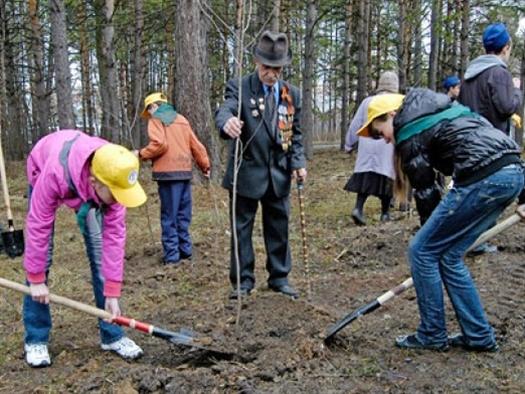 В Самарской области посадят деревья в честь ветеранов Великой Отечественной войны