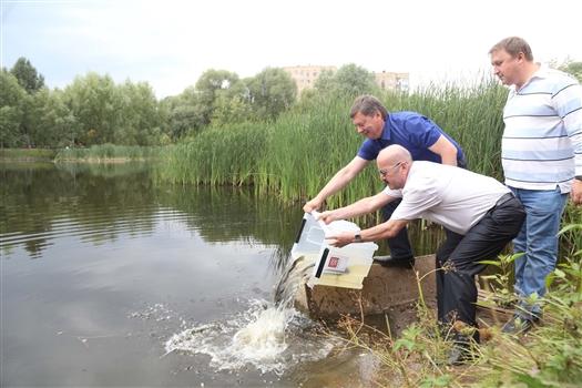 На реконструкцию Воронежских озер могут потратить 156 млн рублей