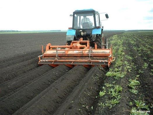 226 млн руб. пойдут на предоставление субсидий сельхозтоваропроизводителям на возмещение ущерба от засухи