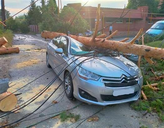 В Тольятти машину пенсионерки раздавило деревом, женщину госпитализировали