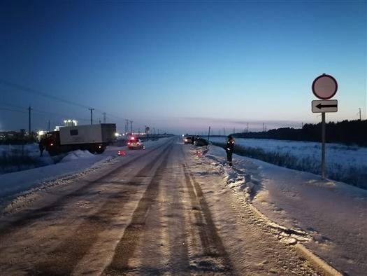 Под Тольятти пострадал водитель легковушки, столкнувшейся с грузовиком