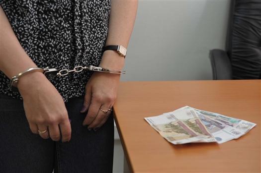 Сотрудники ФСБ возбудили дело о хищении денег у СОФЖИ