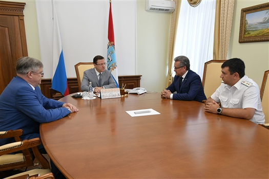 Главе региона представили главного судебного пристава Самарской области