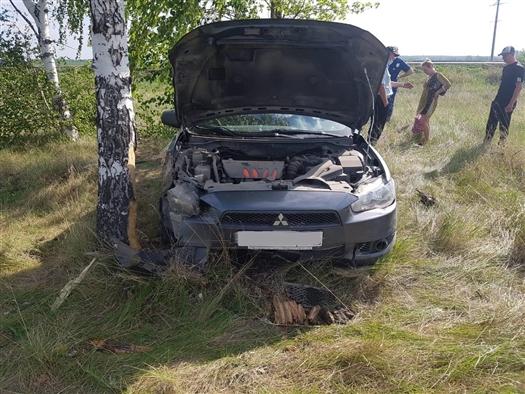 Двое детей пострадали в ДТП с Mitsubishi в Самарской области