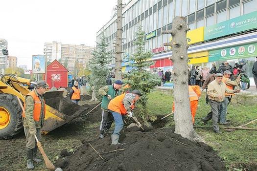 Власти Самары не превышали полномочий, сажая деревья у ЦУМа