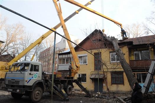 У упавшего на дом дерева оказались подгнившие корни